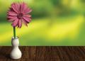 flor rosada en florero