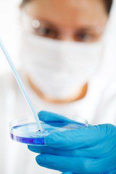el gobierno crea la academia para jóvenes científicos