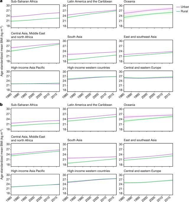 epidemia mundial de obesidad en adultos