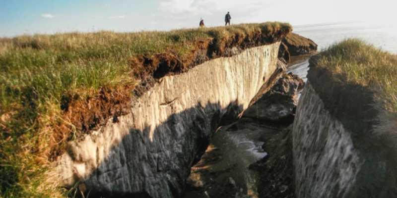 los suelos del permafrost pierden carbono