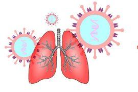 tratar las complicaciones pulmonares del coronavirus