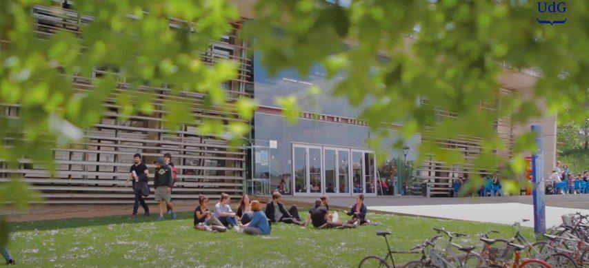 Relación más estrecha entre la universidad y la sociedad