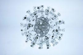 los virus son misteriosos por su naturaleza