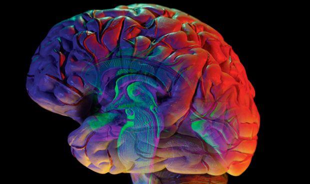 plataforma para investigación metástasis cerebral
