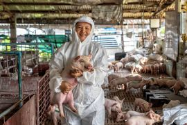 Tres dogmas para afrontar futuras pandemias: una sola salud Tres dogmas para afrontar futuras pandemias: una sola salud