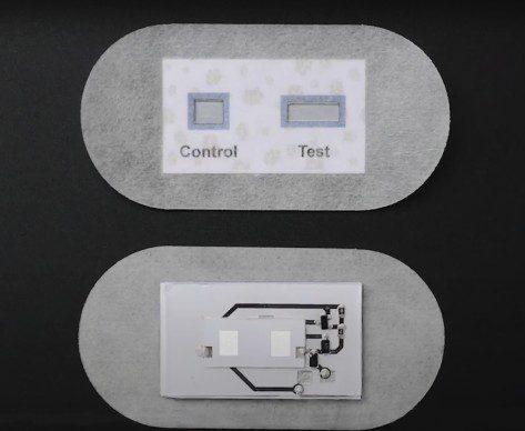 csic: spin-off parche para la piel facilita el diagnóstico de la fibrosis quística