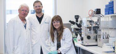 upf y wehi,reveladas las armas secretas de un gen clave para combatir el cáncer