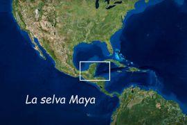 tec, cuando se destruye selva en el territorio maya