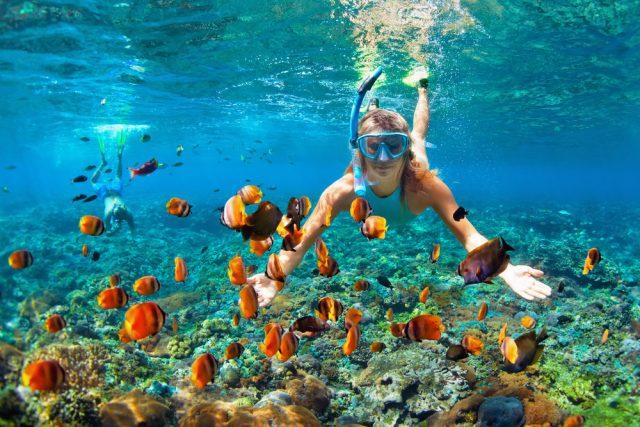 luz y sonido para ver bajo el agua