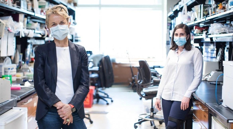 institutos gladstone, detectar el coronavirus con un móvil