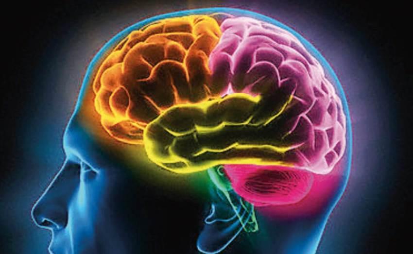 el cerebro juega con nuestros recuerdos