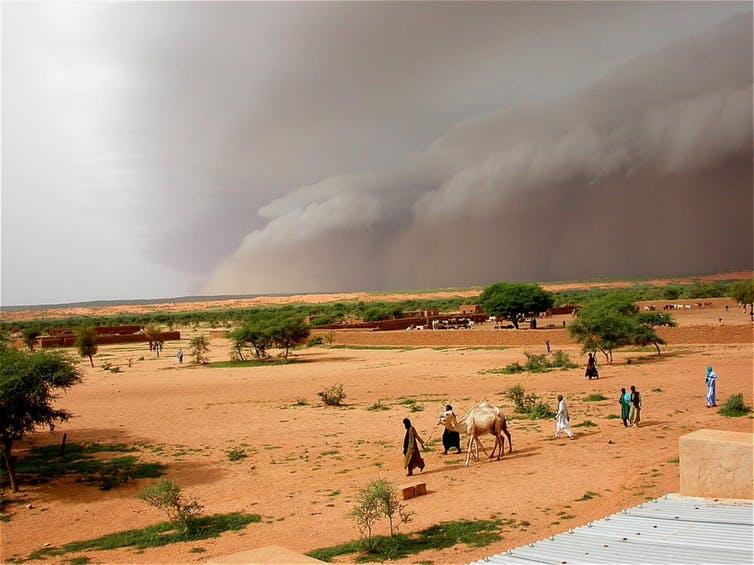 Diez buenas noticias sobre desertizacion3