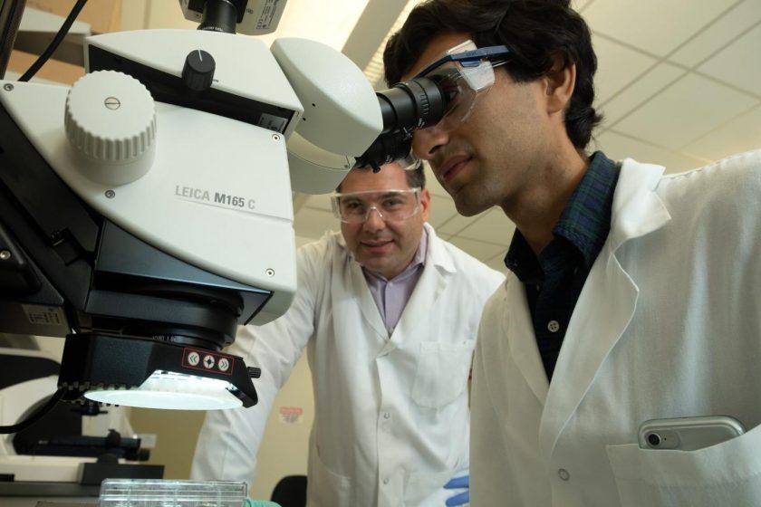 Omid Veiseh Laboratorio