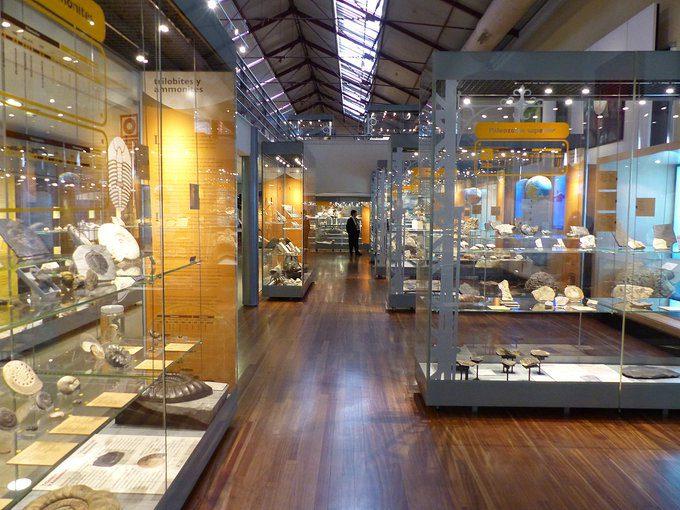 El CSIC digitaliza los archivo Museo de Ciencias Naturales2