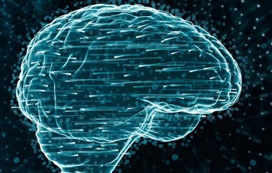 Entender el cerebro para apaliar sus enfermedades4