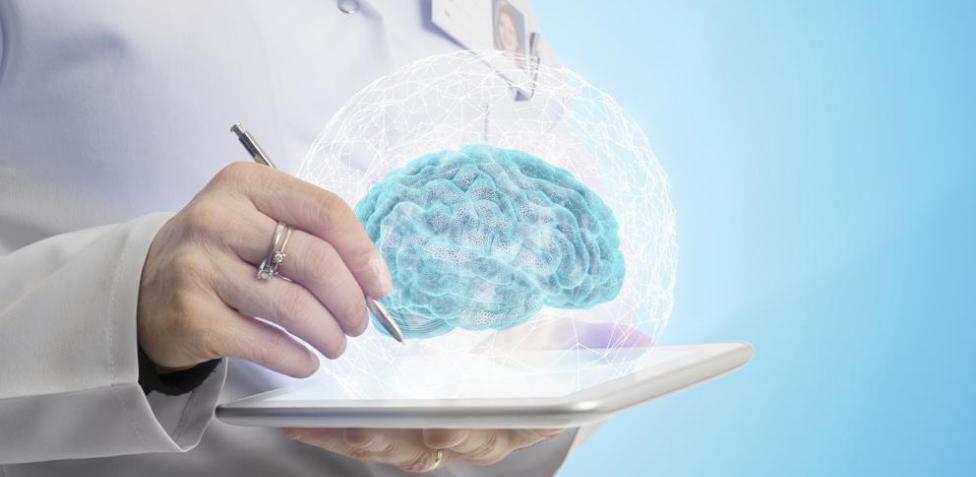 Entender el cerebro para apaliar sus enfermedades5
