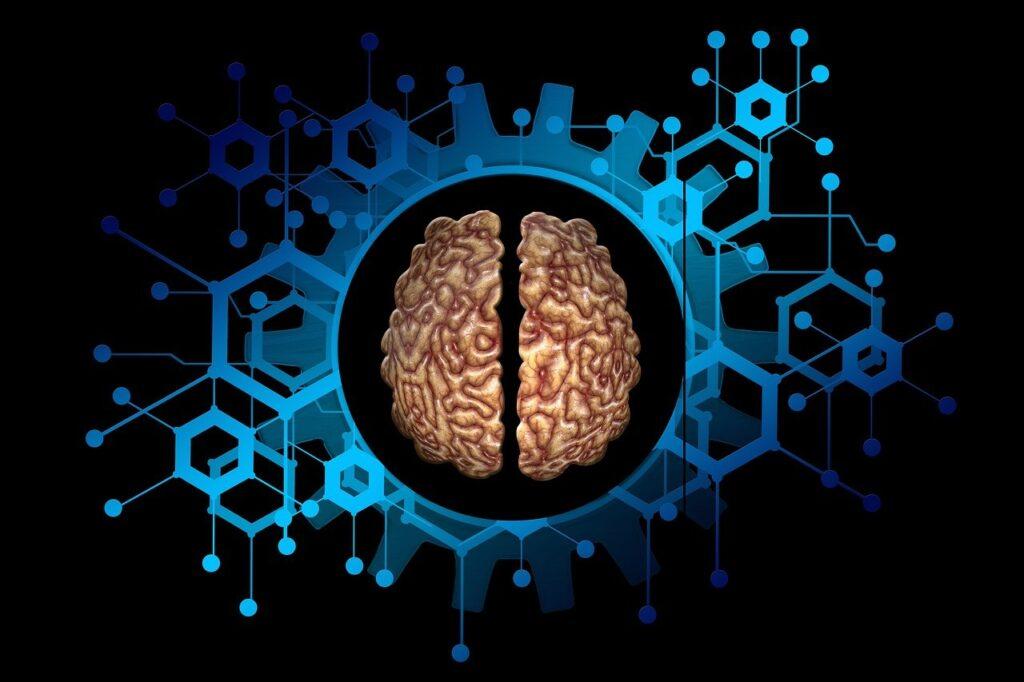 Una arquitectura informatica inspirada en el cerebro3