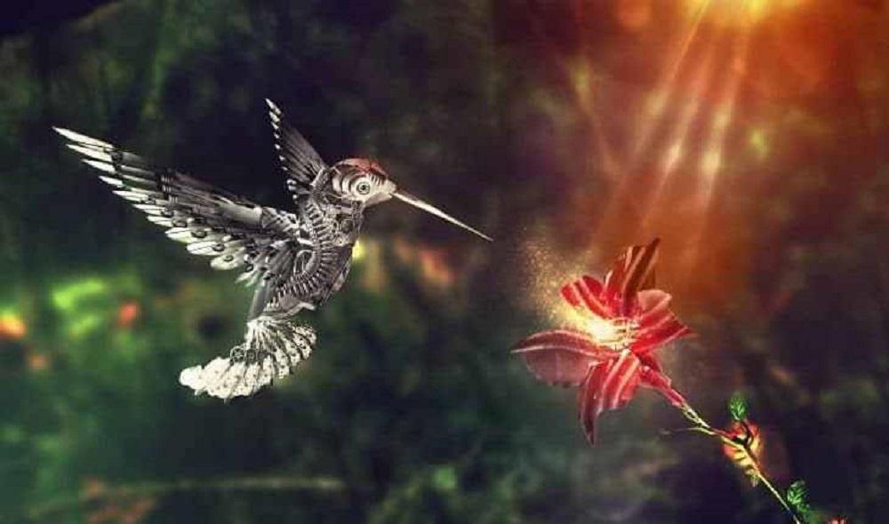 """""""Se um beija-flor se aproxima de ti, significa que receberás a visita de alguém a quem amas"""""""
