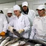 HACCP garantiza calidad sanitaria de los alimentos