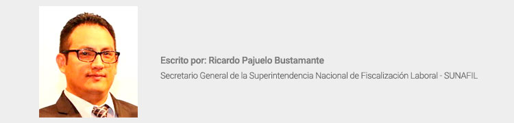 Ricardo Pajuelo Bustamante - Sunafil