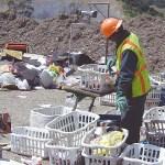 Residuos: clasificación, riesgos y contaminación
