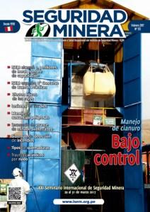 Seguridad Minera 133