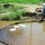 Técnicas empleadas para la biorremediación de suelos