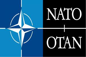 Cómo funciona el Mercado de la OTAN /3.000 millones € / Año