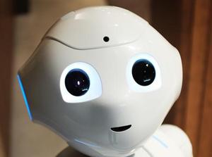 World Robot Olympiad 2019 (WRO 2019)