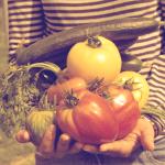 L'alimentation, au coeur des relations à soi, aux autres et au monde