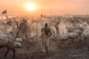 Le Soudan : un retour en Afrique ?