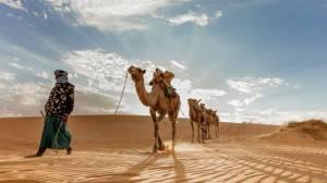 La Mauritanie à la croisée des chemins