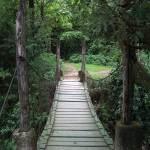 Parque Ecológico Jacarandas de Cayalá (Guatemala City) —Luis Fernando Muñoz