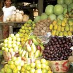 Tropical fruits (photo by Rudy Girón)