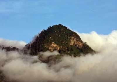 A photographic quest to the upper cloud forest on Atitlán Volcano's southern flank in search of the rare and elusive