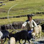 Here it is too high and cold for the cultivation of corn or even wheat, so the local population, nearly all of whom are of the Mam-Maya tribe, eke out a living pasturing sheep.