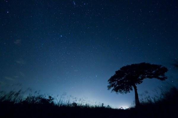 Ahora que entiendo la noche by Ivan Castro Peña