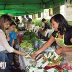 Visitors browse the booths of organic vegetables, herbs, coffee, sugar, chocolate, cheese and jams