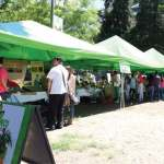 The Organic Market will be held on the third Sunday of each month between 11 and 13 calle of zone 13 on Avenida Las Américas, Guatemala City