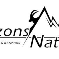 Interview du collectif horizons naturels