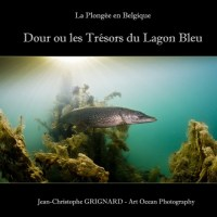 Livre : La Plongée en Belgique « Dour ou les Trésors du Lagon Bleu » - Jean Christophe Grignard