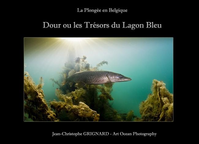 Livre La Plongee En Belgique Dour Ou Les Tresors Du Lagon Bleu Jean Christophe Grignard Revue Photo