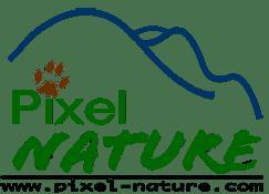 Association Pixel Nature