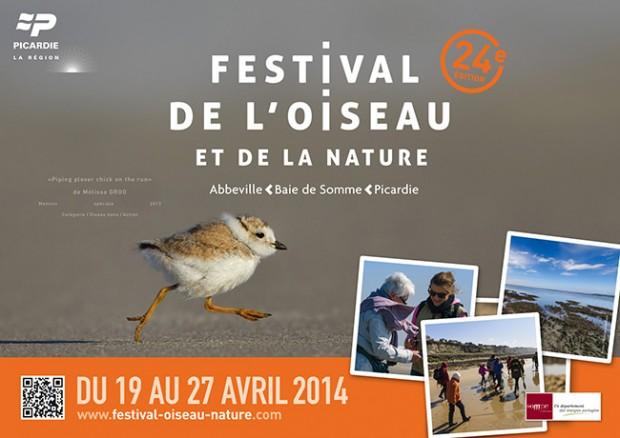 festival-oiseau-2014