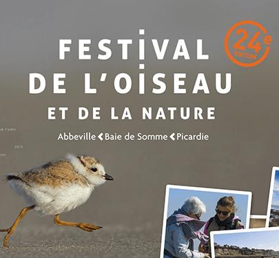 Il exposera au festival de l'oiseau : Jean Claude Picard