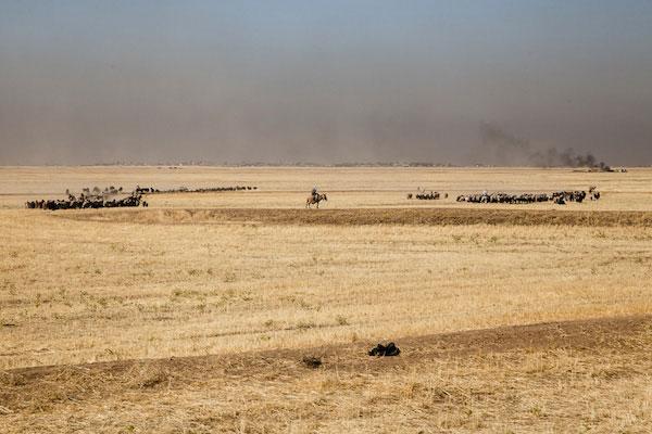 le_kurdistan_syrien_une_province_en_route_vers_l_autonomie