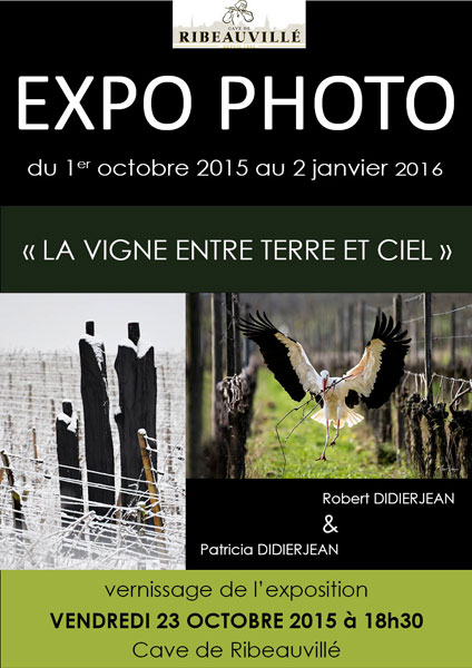 Affiche-EXPO-Didierjean