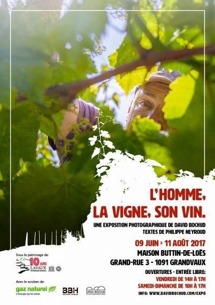 L'homme, la vigne, son vin