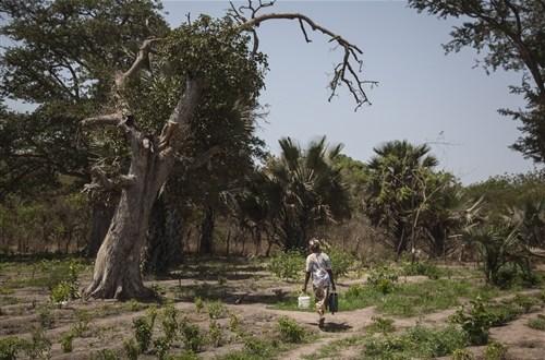 Bokidiawé : UN COLLECTIF PROTESTE