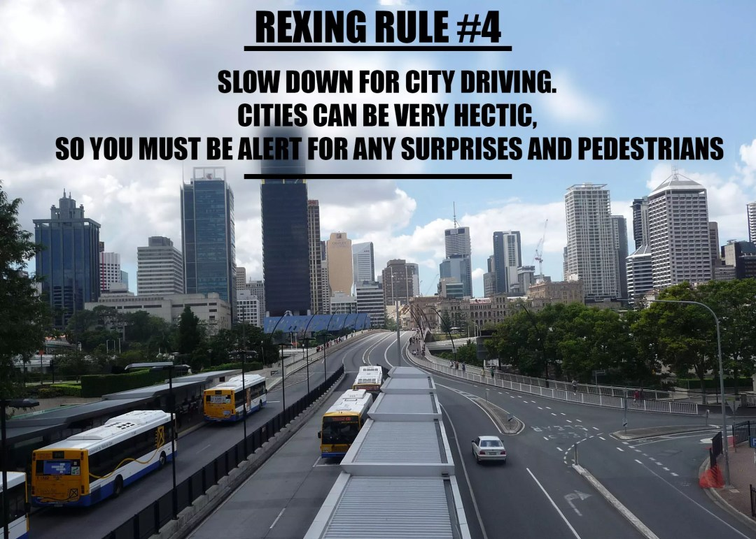 rexingrule-4